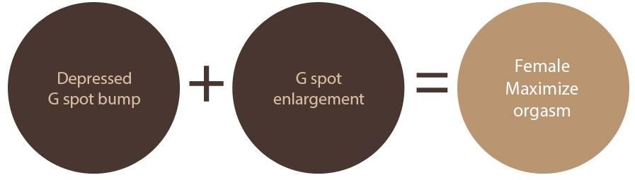 B-5 Extra(stem cell vaginoplasty, G-spot, Implant, PRP, L1) image 13